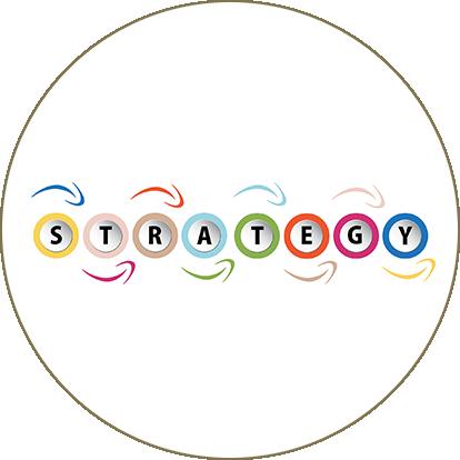 La strategia di Palazzani è il punto cruciale del lavoro di consulenza aziendale